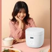 康佳(KONKA)智能电饭煲电脑款2L KRC-RS25